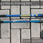 Different models of Nordic Walking Poles