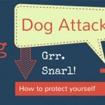 Nordic Walking and Dog Attacks